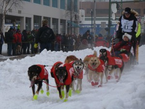 On By! Pass another team or other distraction-there, you just learned your first mushing command!
